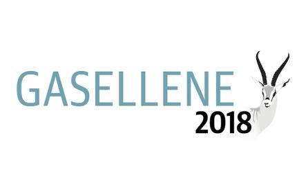 gaselle 2018